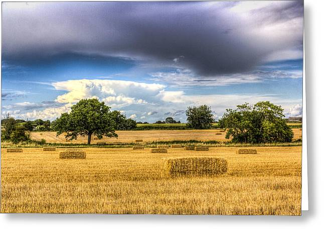 The Summer Farm View Greeting Card