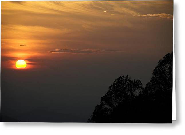 The Sun Behind The Trees Greeting Card by Rajiv Chopra
