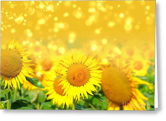 The Sunflowers Greeting Card by Boon Mee