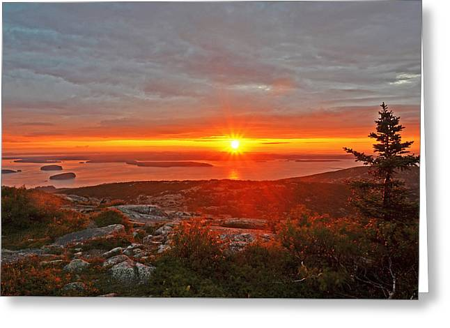The Sunrise From Cadillac Mountain In Acadia National Park Greeting Card