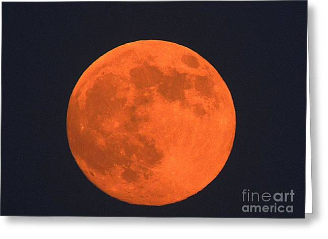 The Super Moon Greeting Card by Marcia Lee Jones