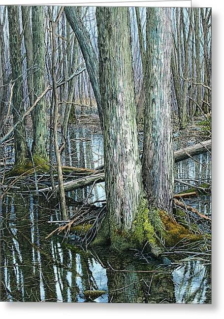 The Swamp 3 Greeting Card