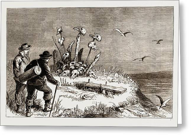 The Swedish Arctic Expedition A Samoiede Sacrificial Altar Greeting Card by Litz Collection