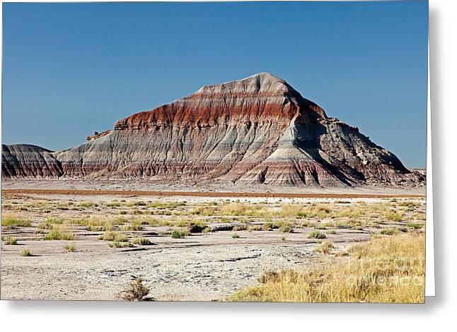 The Tepees Petrified Forest National Park Greeting Card by Fred Stearns