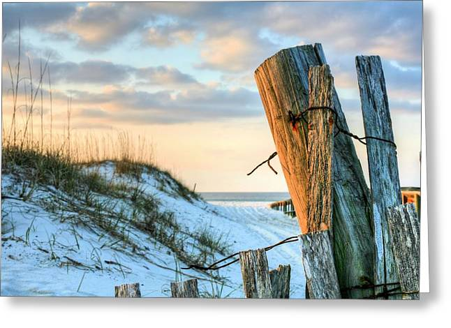 The Texture Of Orange Beach Greeting Card by JC Findley