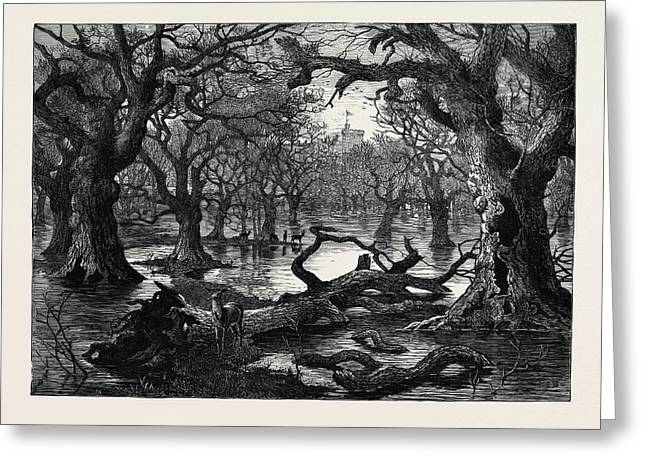 The Thames Floods Scene In The Home Park Windsor 1879 Greeting Card
