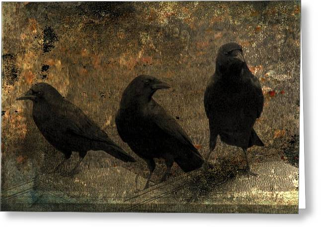The Three Black Crows Greeting Card by Gothicrow Images
