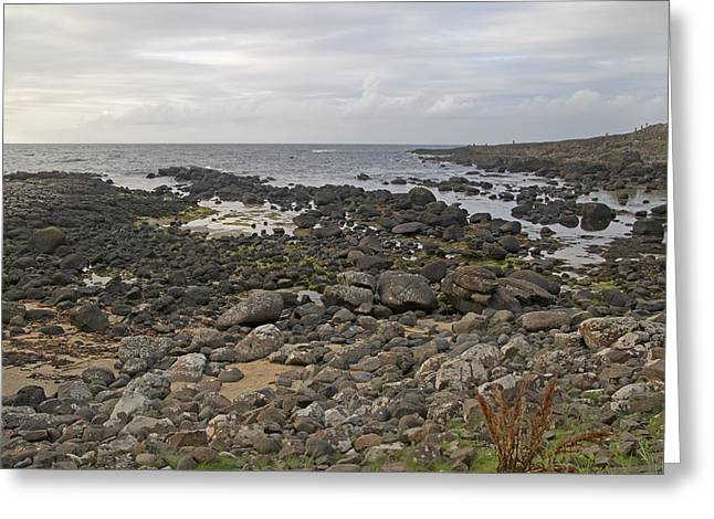 The Timing Of Stone -- Giant's Causeway -- Ireland Greeting Card by Betsy Knapp