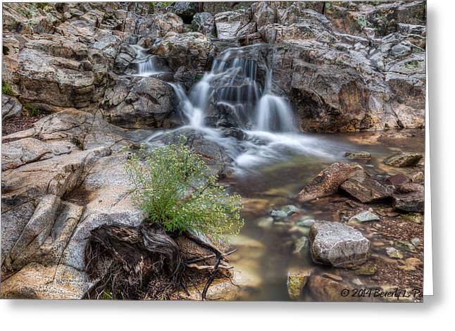 The Top Of Carr Canyon Falls Greeting Card by Beverly Parks