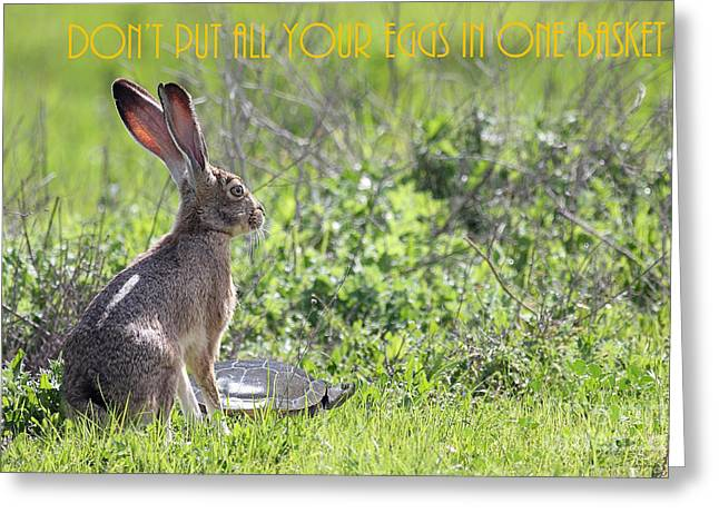 The Tortoise And The Hare Dont Put All Your Eggs In One Basket 40d12379 Greeting Card by Wingsdomain Art and Photography