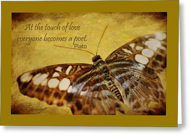 The Touch Of Love Greeting Card by Nikolyn McDonald