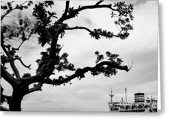 The Tree And The Boat Greeting Card