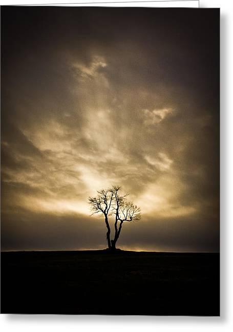 The Tree Greeting Card by Benjamin Williamson