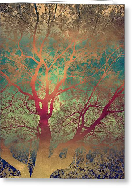 The Tree Called Beautiful Greeting Card by Gray  Artus