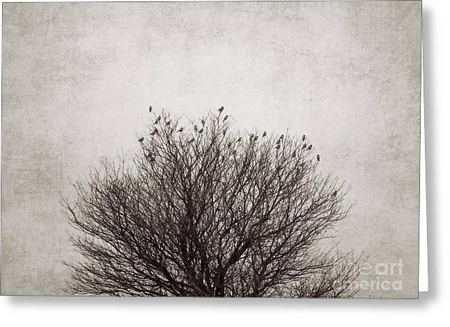 The Tree Greeting Card by Diana Kraleva