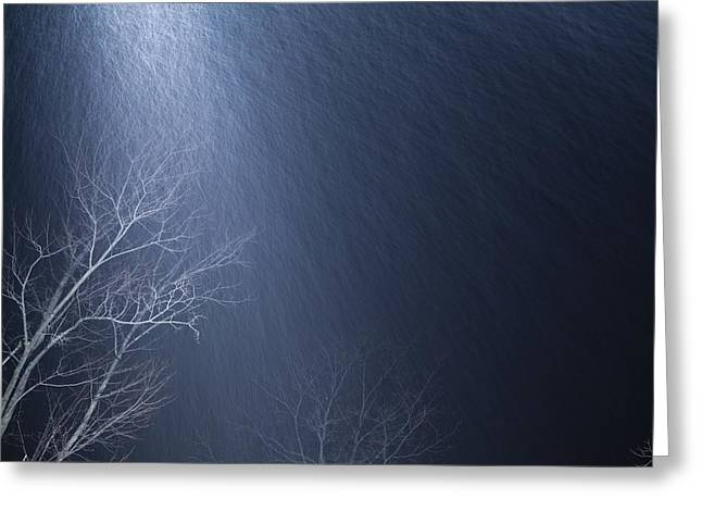The Tree Under The Snowfall Greeting Card
