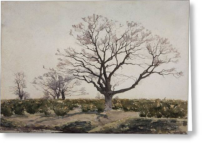 The Tree  Greeting Card by Henri Duhem