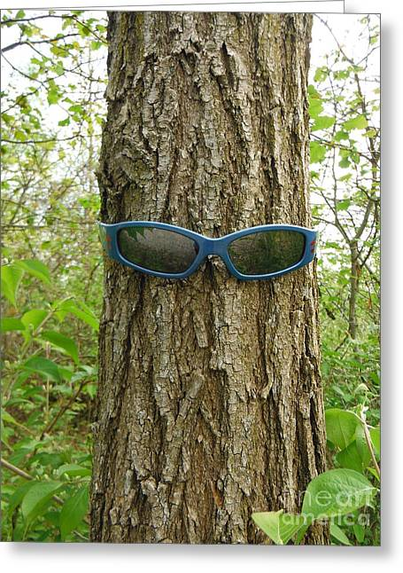 The Trees Are Watching 1 Greeting Card by Paddy Shaffer