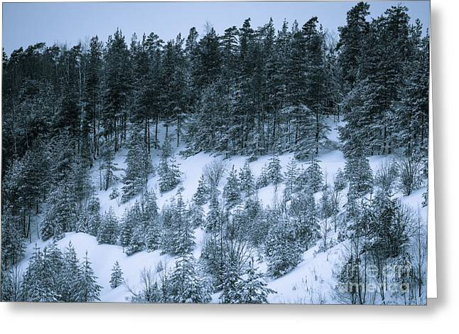 The Trees Of The Snowy Hill Greeting Card