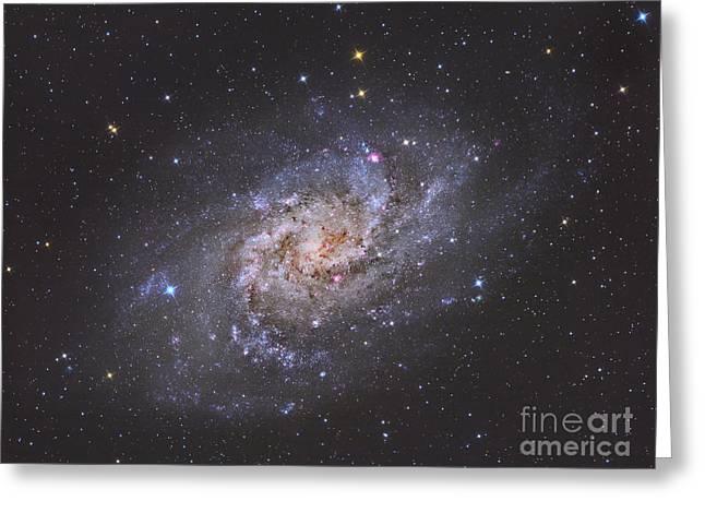 The Triangulum Galaxy Greeting Card by Reinhold Wittich
