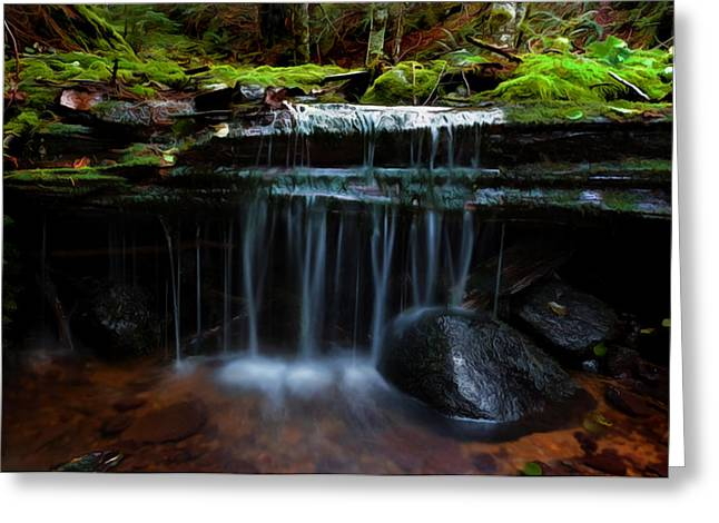 The Trickling Brook Greeting Card