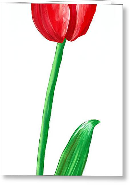 The Tulip Greeting Card by Kate Holloman