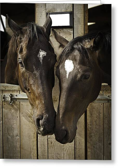 The Two Of Us Greeting Card by Lesley Rigg