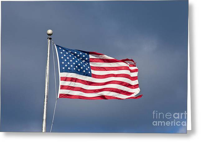The United States Of America Greeting Card by Benjamin Reed
