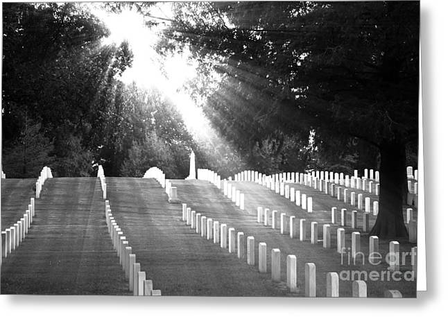 The Unknown Soldiers Greeting Card