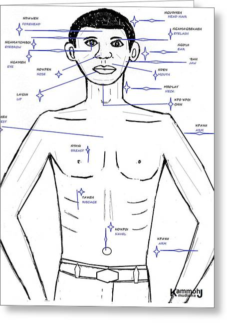 The Upper Anterior Human Body -  In Mende Greeting Card by Mudiama Kammoh