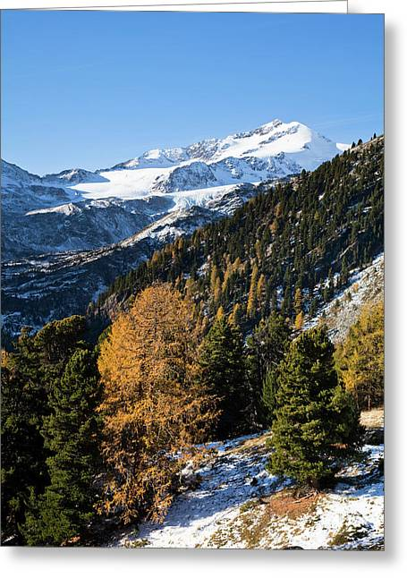 The Upper Valley Martelltal In Fall Greeting Card by Martin Zwick