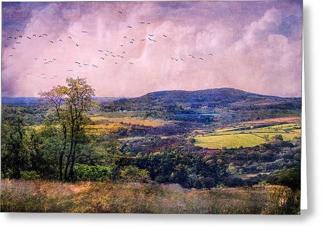 The Valley Greeting Card by John Rivera
