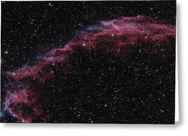 The Veil Nebula Greeting Card by Brian Peterson