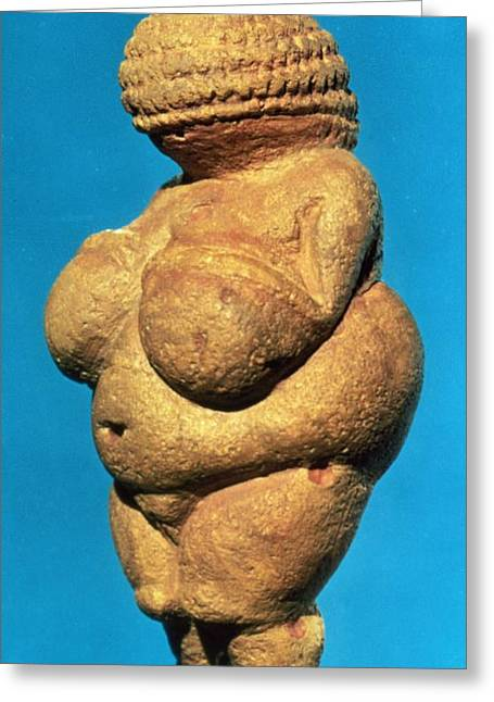 The Venus Of Willendorf, Side View Of Female Figurine, Gravettian Culture, Upper Palaeolithic Greeting Card by .
