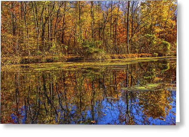 The Vibrancy Of Leaves Greeting Card by Kathi Isserman