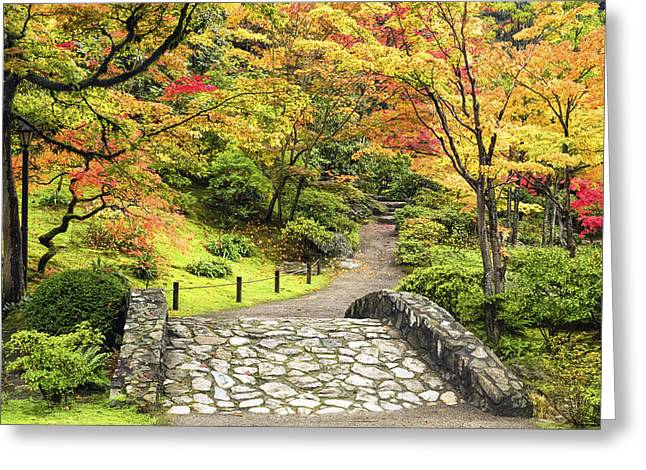 The Vibrant Path Greeting Card by Kyle Wasielewski