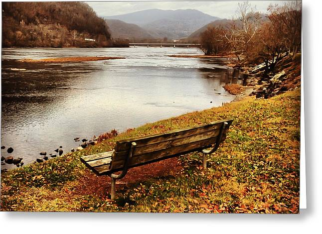 Greeting Card featuring the photograph The View by Kerri Farley