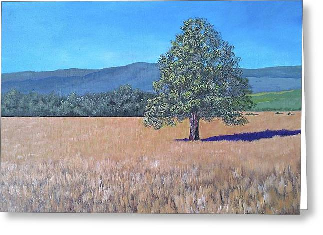 Greeting Card featuring the painting The View by Suzanne Theis