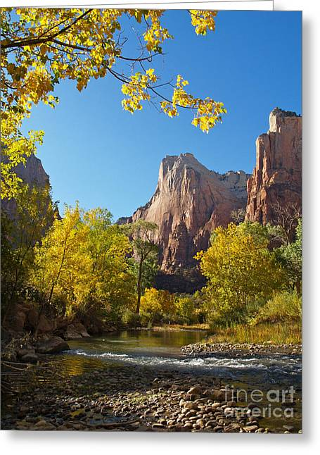 The Virgin River And The Court Of The Patriarchs Greeting Card by Alex Cassels