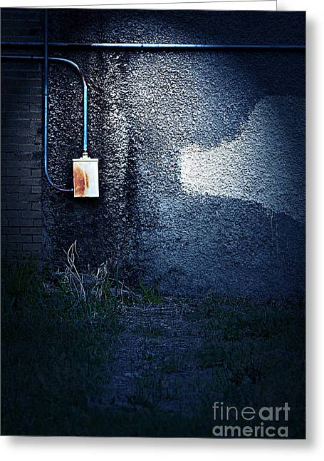 The Wall Pt 2 Greeting Card by Trish Mistric
