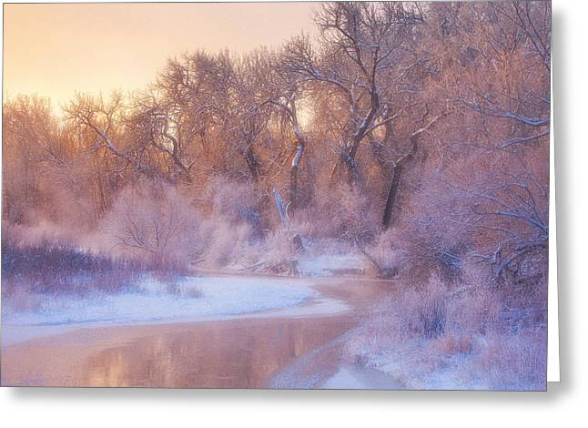 The Warmth Of Winter Greeting Card by Darren  White