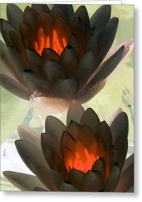Greeting Card featuring the photograph The Water Lilies Collection - Photopower 1042 by Pamela Critchlow