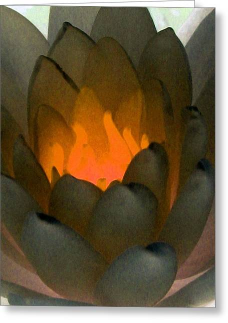 Greeting Card featuring the photograph The Water Lilies Collection - Photopower 1043 by Pamela Critchlow