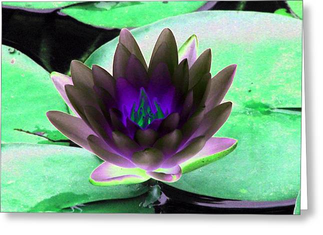 Greeting Card featuring the photograph The Water Lilies Collection - Photopower 1116 by Pamela Critchlow