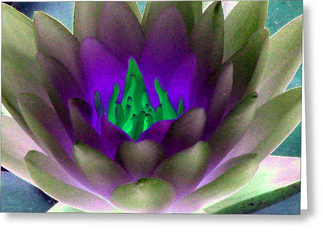 Greeting Card featuring the photograph The Water Lilies Collection - Photopower 1117 by Pamela Critchlow