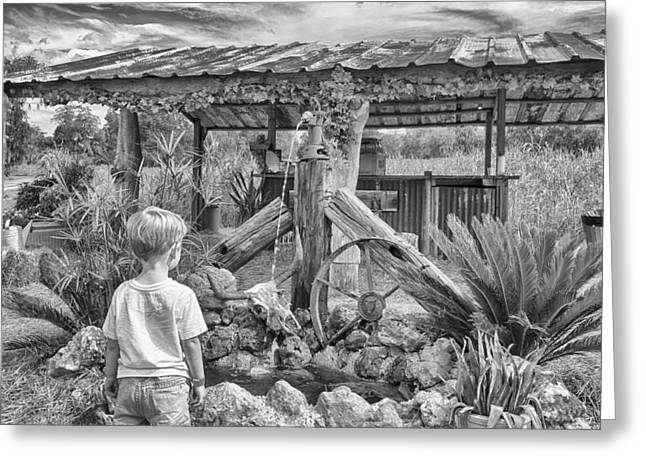 Greeting Card featuring the photograph The Watering Hole by Howard Salmon