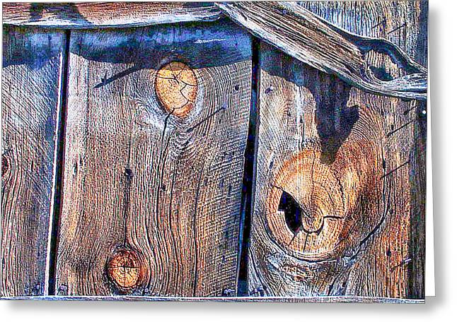 The Weathered Abstract From A Barn Door Greeting Card by Bob and Nadine Johnston