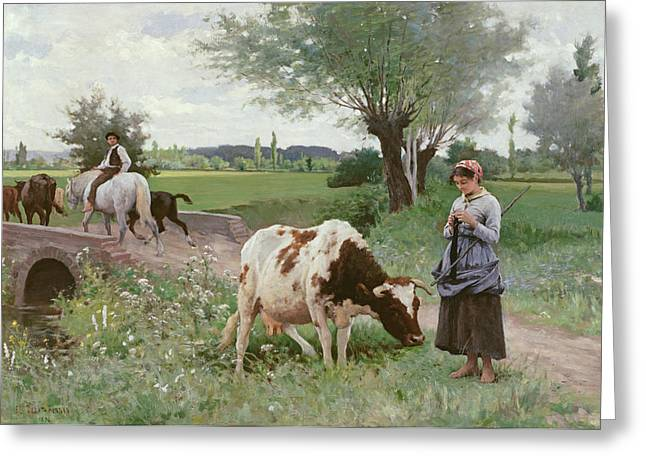 The Well Kept Cow Greeting Card by Edouard Debat-Ponsan