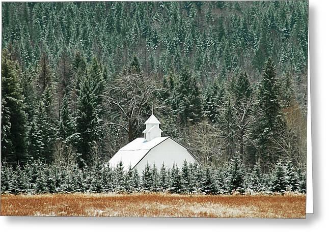 The White Barn Greeting Card by Annie Pflueger