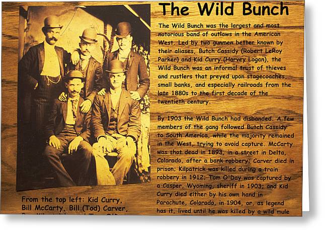 The Wild Bunch Greeting Card by Camillus S Fly